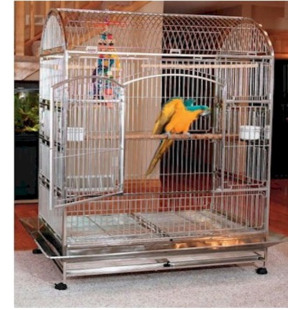 stainless steel bird cages,baby parrots,handfed parrot,cockatoos,macaws,amazon parrot